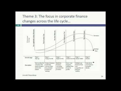 Session 2 (Undergraduate): More Themes In Corporate Finance & Introducing Its Objective
