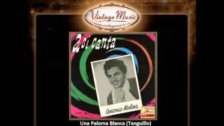 Antonio Molina -- Una Paloma Blanca (Tanguillo) (VintageMusic.es)