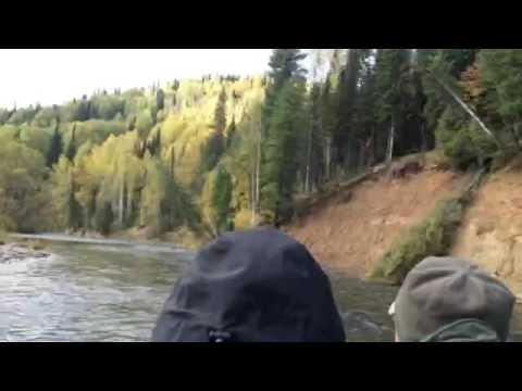 рыбалка на тайменя терсь