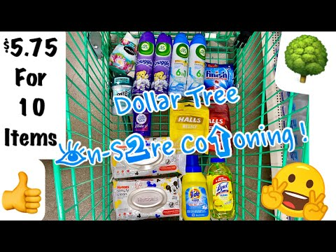 SURPRISE! Another Dollar Tree Coupon Haul | 10 Items for $5.75 ! | February 11, 2020