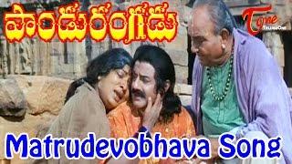 Pandurangadu - Matrudevobhava - Bala Krishna - Emotional Song