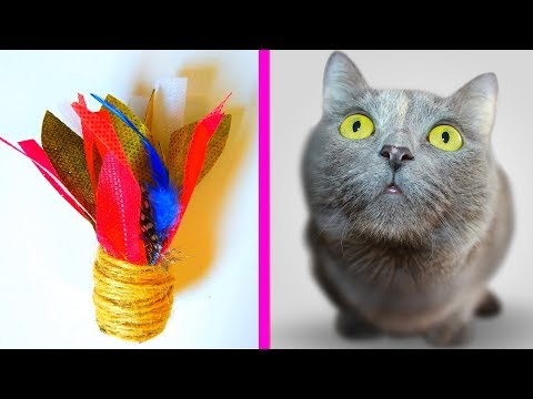 DIY - butterfly toy for cats | craft projects for pets | how to do simple toys for pets
