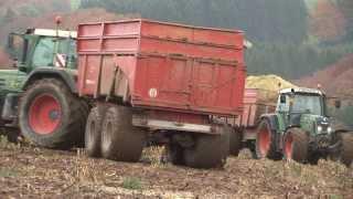 Lohnunternehmen Reiff im Einsatz: Maisernte