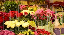 Flower Shop Demo Video - Video SEO Expert - Video SEO Services