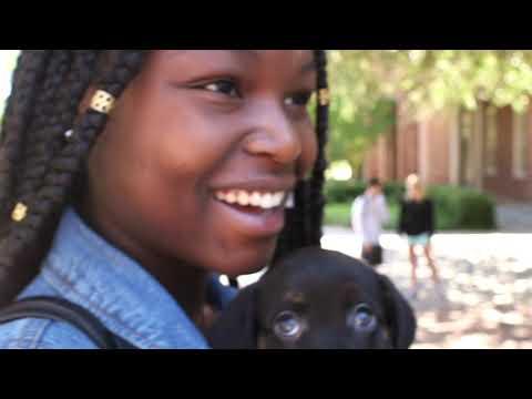 Furman University || Apply Now