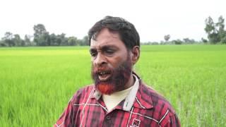 Progress of Folk Rice Conservation in Uttra Dinajpur, WB