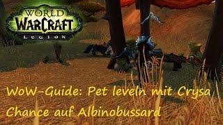 WoW-Guide: Pet leveln mit Crysa - Wie bekomme ich Albinobussard?
