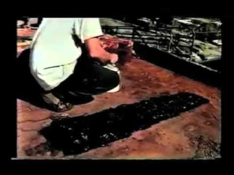 Top Coating Corroseal Rust Converting Primer