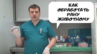 Как обработать рану животному