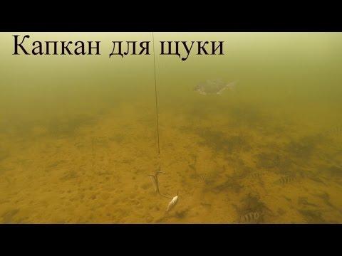 Зимняя рыбалка. Капкан для щуки. Как это работает?