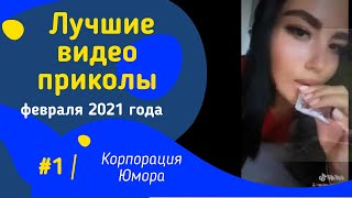 ПОДБОРКА ПРИКОЛОВ ФЕВРАЛЬ 2021 САМЫЕ СМЕШНЫЕ РОЛИКИ ДО СЛЕЗ ЛУЧШИЕ ПРИКОЛЫ ПРИКОЛЬНОЕ ВИДЕО 1