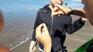 Pesca all inglese tracina e orata