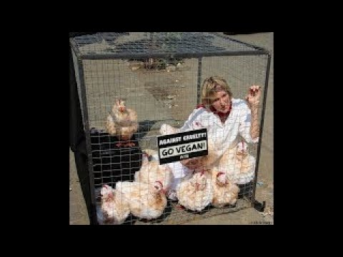 Billion Dollar Chicken Shop KFC doc reveals 'oppressive' farming conditions