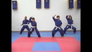 Master Karate Todd: Lesson 3 - High Block