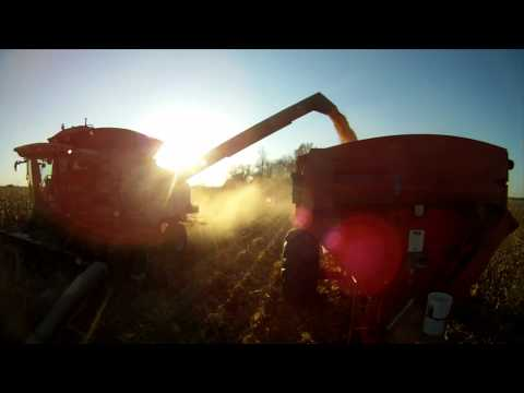 Corn and Soybean Harvest 'onboard cameras' - October 2011