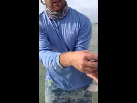 Redfish In Key West