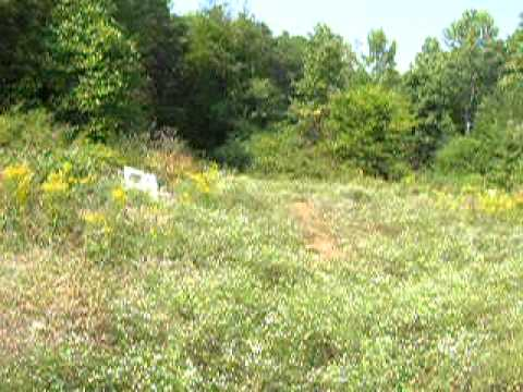 owner financing land,1.0 acres in Louisa