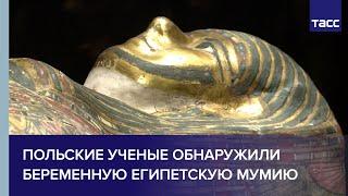 Польские ученые обнаружили беременную египетскую мумию