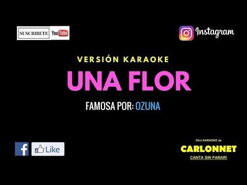 Una flor - Ozuna (Karaoke)