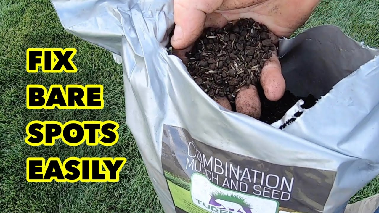 How to Repair Bare Spots in a Lawn in the Fall and Spring