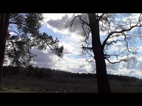 Herbst9 & Atrium Carceri -