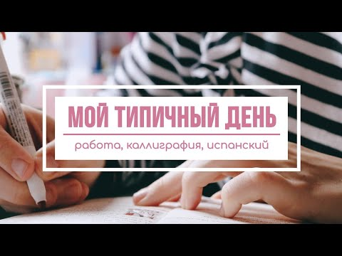 Учись и работай со мной: мой день после переезда