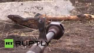 Ukraine: See Soviet WWII-era weaponry used by the DNR