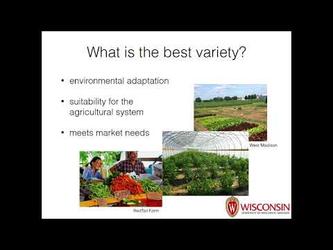 Conducting On Farm Variety Trials to Manage Risk for Organic and Specialty Crop Producers Part 1