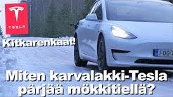 Miten karvalakki-Tesla pärjää mökkitiellä?