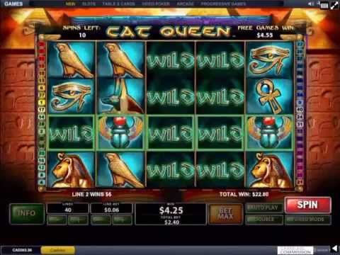 CAT QUEEN Playtech Casino