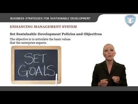 Business Strategies for Sustainable Development
