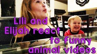 Lili and Elijah React to Funny Animal Videos!