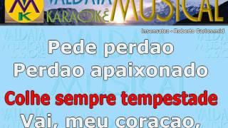 Insensatez   Roberto Carlos   karaoke