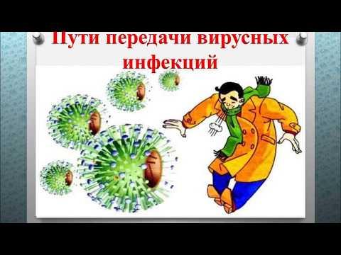 Пути передачи вирусных инфекций