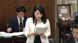 2018 05 15 参議院内閣委員会