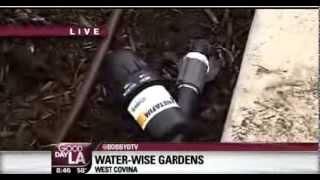 Water-Wise Gardens