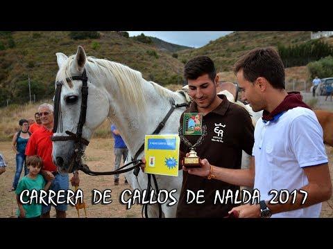 Carrera de Gallos de Nalda 2017
