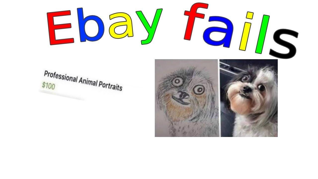 Professionale Tierbilder Ebay Kleinanzeigen Fails Youtube
