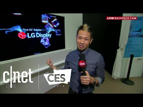 LG Display's exclusive showroom and the world's first rollable TV