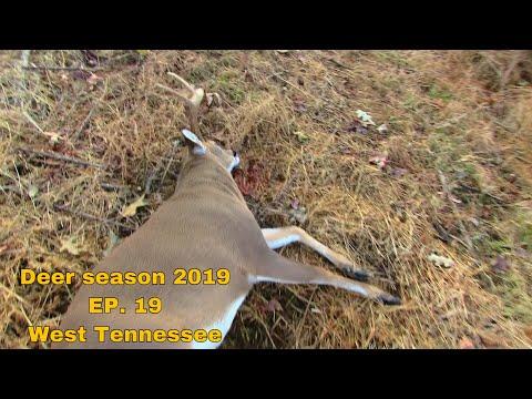Deer Season 2019 EP.19 West Tennessee