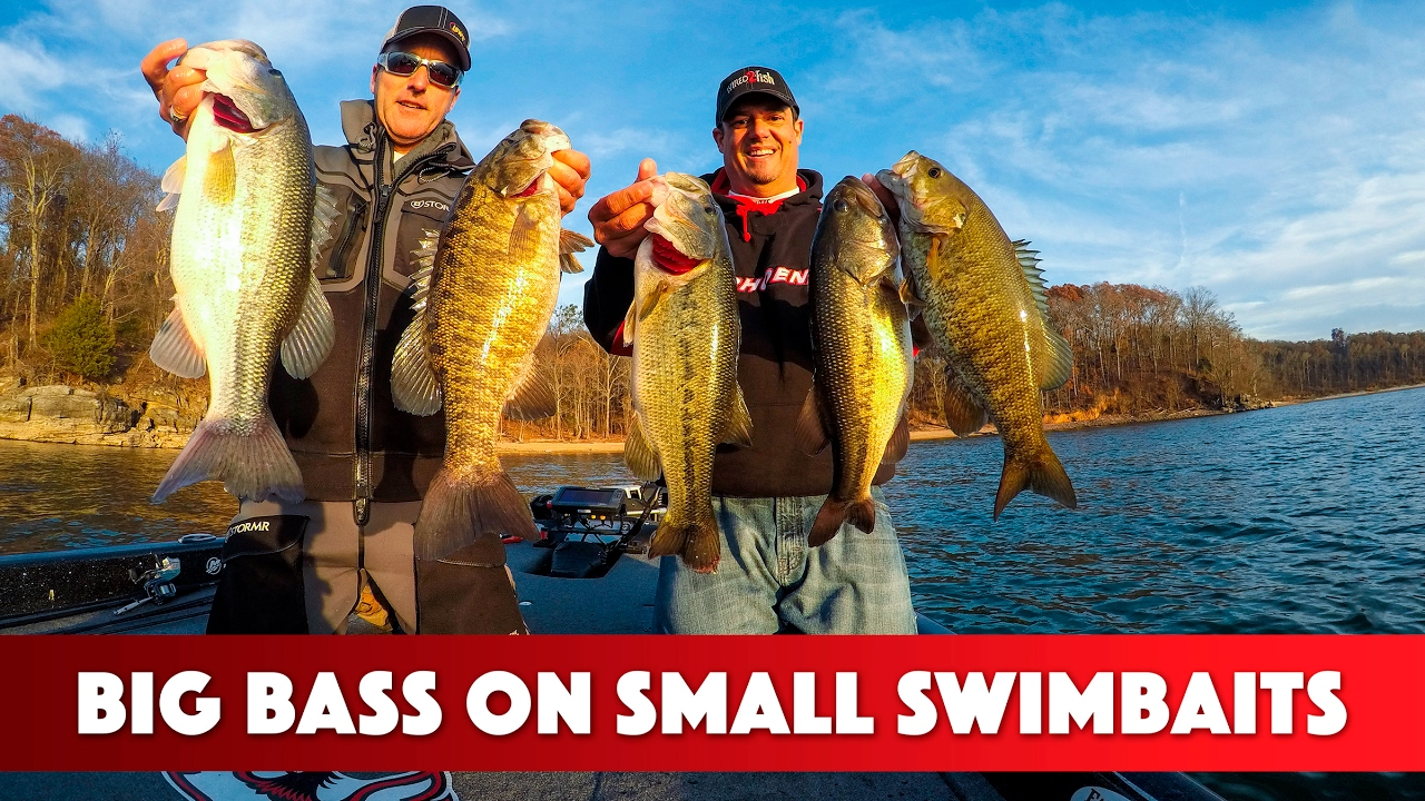 Fishing Swimbaits for Big Bass in the Winter