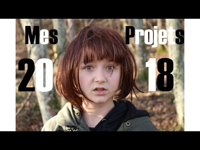 Mes Projets 2018 (version second degrès) // Satine Walle