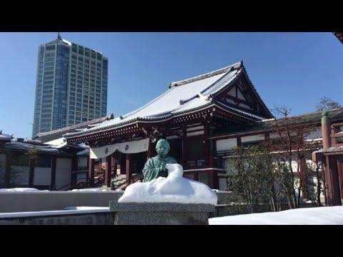 Forte nevasca em Tóquio