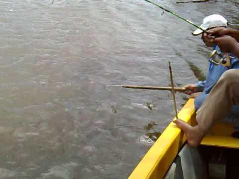 fun fishing di bangau, Brunei