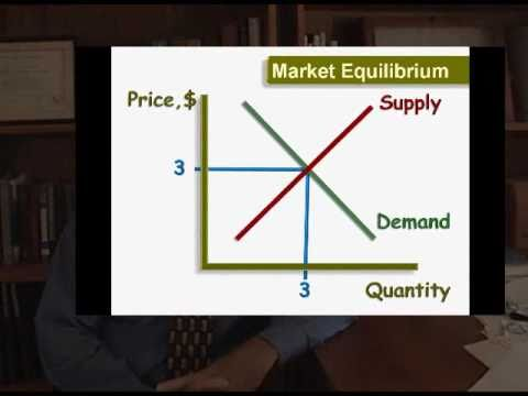 Introduction to Economics; Market Equilibrium and Market Forces