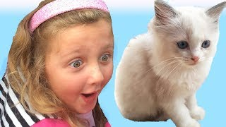 Little Kitten My Favorite Cute Cat - Play Fun Pet Care with Children THIS MADE HER CRY with Joy!!