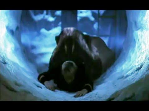 Boa: Human Kill-Count