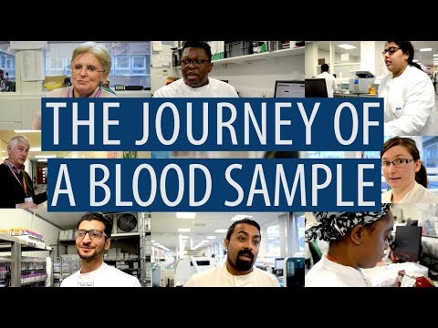 The Journey Of A Blood Sample #DiscoverPathology