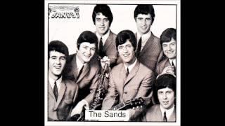 tony kenny & the sands, dance,dance,dance.......wmv