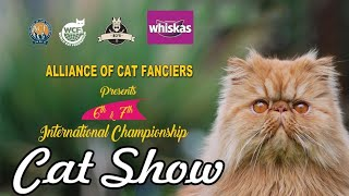 INTERNATIONAL CAT SHOW IN KERALA 2019 BY KCFA WCF CAT SHOW ACF cat show cat videos  kerala cats